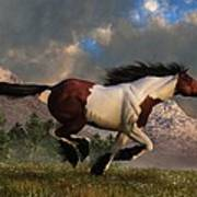 Pinto Mustang Galloping Art Print