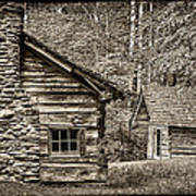 Pioneer Cabin And Shed In Cades Cove E227 Art Print