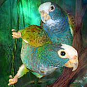 Pionus In Paradise Art Print