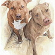 Pitbulls Watercolor Portrait Art Print