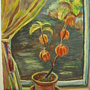 Plant In A Window Art Print by Ellen Howell