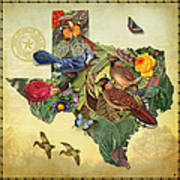 Nature Map Of Texas Art Print