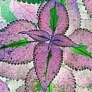 Plant Pattern - Photopower 1212 Art Print