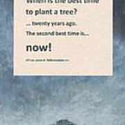 Plant Trees Art Print