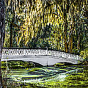 Plantation Bridge Art Print