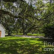 Plantation Grounds Art Print