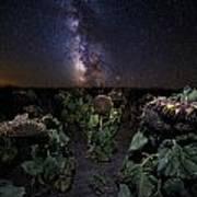 Plants Vs Milky Way Art Print