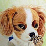Playful Ginger Art Print