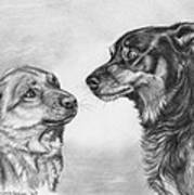 Playing Dog's Emotions Art Print