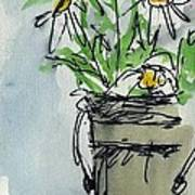 Plein Air Sketchbook. Ventura California 2011.  Tall Bucket Of Daisies From My Backyard Art Print by Cathy Peterson