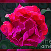 Plentiful Supplies Of Pink Peony Petals Abstract Art Print