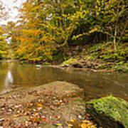 Plessey Woods And The River Blyth Art Print