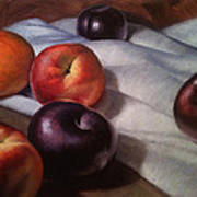 Plums And Nectarines Art Print by Timothy Jones