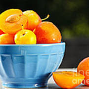 Plums In Bowl Art Print