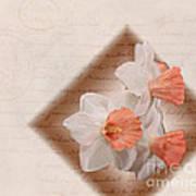 Poem Of Peach Daffodils Art Print