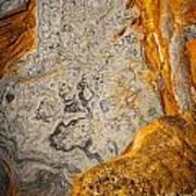 Point Lobos Abstract 12 Art Print