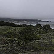 Point Lobos National Park Art Print
