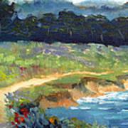 Point Lobos Trail Art Print by Karin  Leonard
