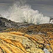 Point Lobos Wave Art Print
