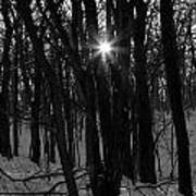 Point Of Light In Black And White Art Print
