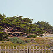 Point Pinos Lighthouse Pacific Grove California Art Print