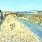 Point Reyes Country Road Art Print