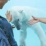 Polar Bear 3 Art Print