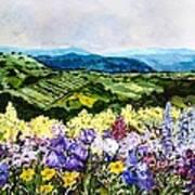 Pollinators Ravine Art Print