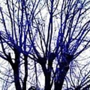 Vessels Of Blue Art Print