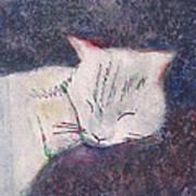 Poloma Sleep2 Art Print