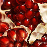 Pomegranate Seeds Art Print