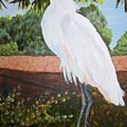 Ponce Point Egret Art Print