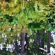 Pond 7 Art Print