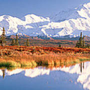 Pond, Alaska Range, Denali National Art Print