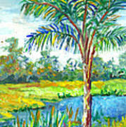 Pond And Palm Art Print