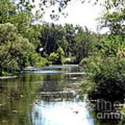 Pond At Tifft Nature Preserve Buffalo New York  Art Print