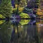 Pond In The Park Oil Paint  2721gop   Art Print