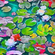 Pond Lily 5 Art Print