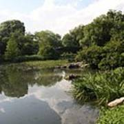 Pond Reflection - Central Park Art Print