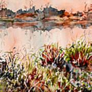 Ponds Untold Stories Art Print