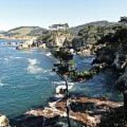 Pont Lobos Cove Art Print