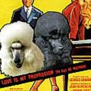 Poodle Standard Art - Love Is My Profession Movie Poster Art Print