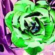 Pop Petals Art Print