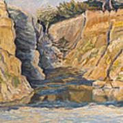 Poplar Cove Art Print