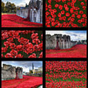 Poppies At The Tower Collage Art Print