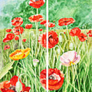 Poppies Collage I Art Print