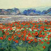 Poppies In Flanders Fields Print by Michael Creese