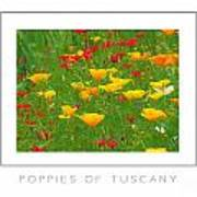 Poppies Of Tuscany Poster Art Print