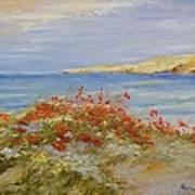 Poppies On The Beach Art Print