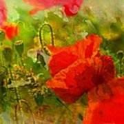 Poppin Poppies Art Print